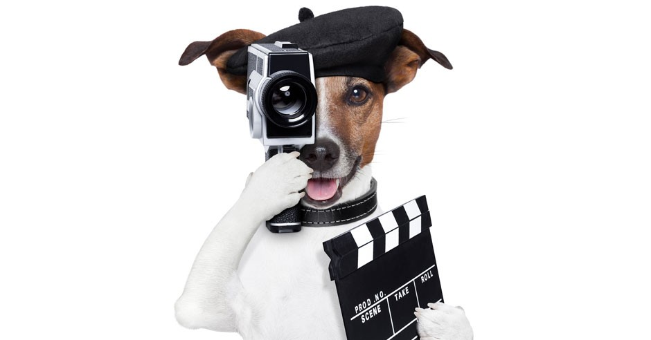 Book Trailers & Demo Reels To Set Yourself Apart!